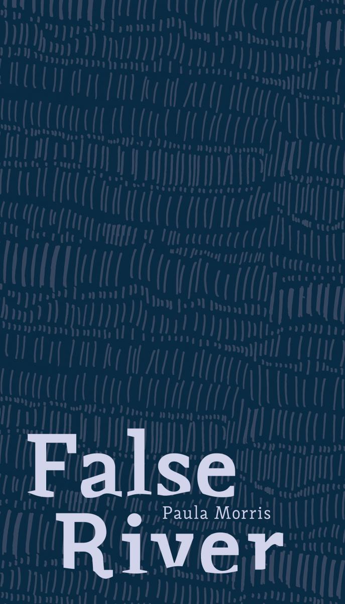 Cover of False River