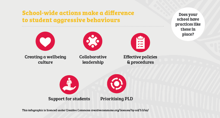 Positive practices on school-wide actions